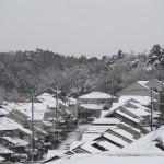 雪国ヨコハマ緑園都市