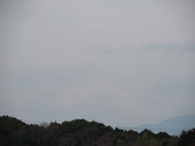 今日は横浜マラソン