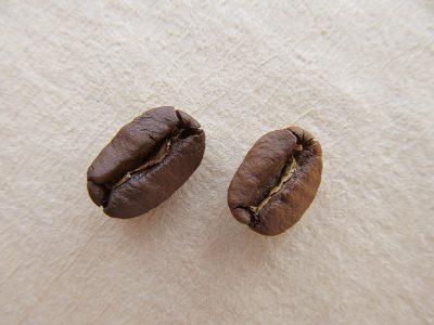 コーヒーの焦げ味の原因