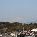 小さな桜と富士山