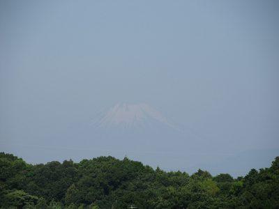 夏富士に衣替え中、梅雨の晴れ間の富士山