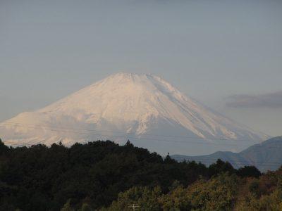 ブラックフライデーのホワイト富士山