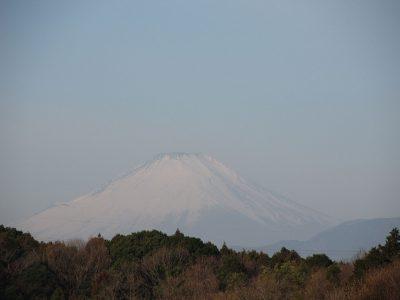 おひな祭りの日の富士山