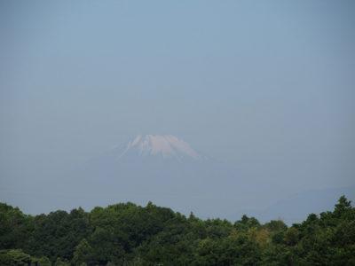 梅雨入り前の貴重な富士山
