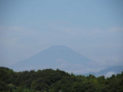久しぶりに見えた夏富士