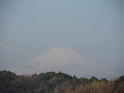 久しぶりに顔を出した富士山ですが・・・