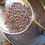 新しいモジアナ産ブラジル豆入荷